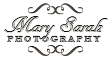 September 2015 - Mary Sarah Photography